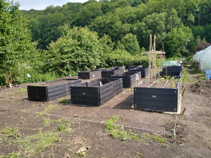 view of our fantastic new raised beds